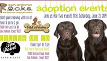 S.A. R.O.C.K.S. Dog Adoption Event This Weekend