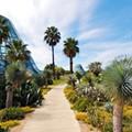 66. Unwind In The Botanical Garden