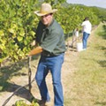 Texas Wine Month: Go local with these unconventional vineyard picks