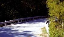 Tracking the Donkey Lady beneath Donkey Lady Bridge