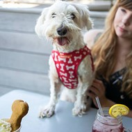 Chill Out With Your Pup at Cuppencake for Wag Down Wednesday