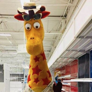 "San Antonio Zoo Campaign to Acquire Geoffrey the Giraffe from Toys""R""Us Off to Slow Start"