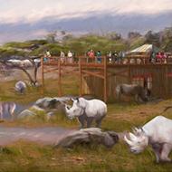 San Antonio Zoo Announces New Expansion to Rhino Habitat, The Savanna