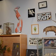 """Welcome to the WOO Lab: UTSA's New 'Cabinet of Curiosities' Aims to Put the """"A"""" in STEAM"""