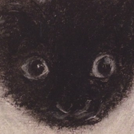 Art Show Centered on Nameless Rescue Kitten Opening at Mockingbird Handprints This Week