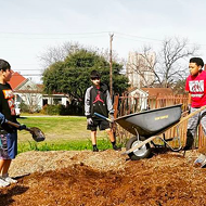 Thinking of Growing Your Own Food in the Coronavirus Crisis? San Antonio Urban Farmers Offer Tips