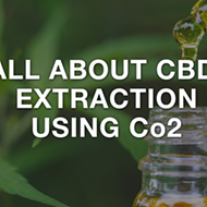 CBD 101 - Everything You Need to Know About CBD
