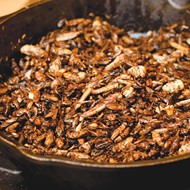 Flavor File: Bugs, Brunches And More