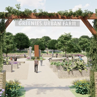 Greenies Urban Farm to donate 1,000 pounds of healthy superfoods to San Antonio families