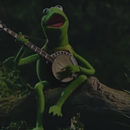"Kermit the Frog Chronicles Miss Piggy's Infidelities in a Cover of Beyoncé's ""Hold Up"""