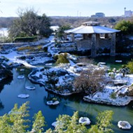21 magical pictures of the snow day San Antonio got from its winter storm
