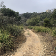 San Antonio's new greenway trails offer a view of the city we otherwise might zoom past