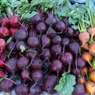 San Antonio ranks as sixth-best U.S. city for farmers markets, according to study