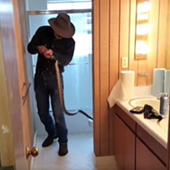5-foot Snake Found in Toilet in Brazos County, Cold Weather May Be a Factor