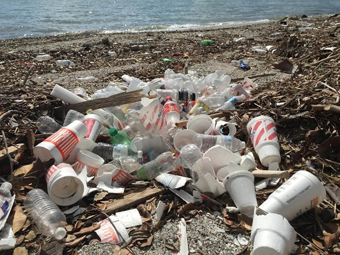 Non-biodegradable polystyrene cups lie strewn across the Corpus Christi Bay beach. (Notice those orange Whataburger cups?) - NEIL MCQUEEN