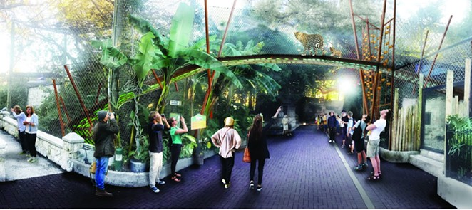 A rendering of the planned Jaguar Cat Walk - COURTESY OF THE SAN ANTONIO ZOOLOGICAL SOCIETY