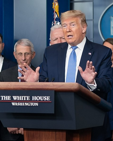 President Donald Trumps speaks at one of his daily briefings on the coronavirus response. - THE WHITE HOUSE