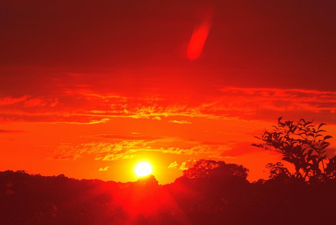 The sun is really doing a number on us these days. - VIA FLICKR USER MICOLO J