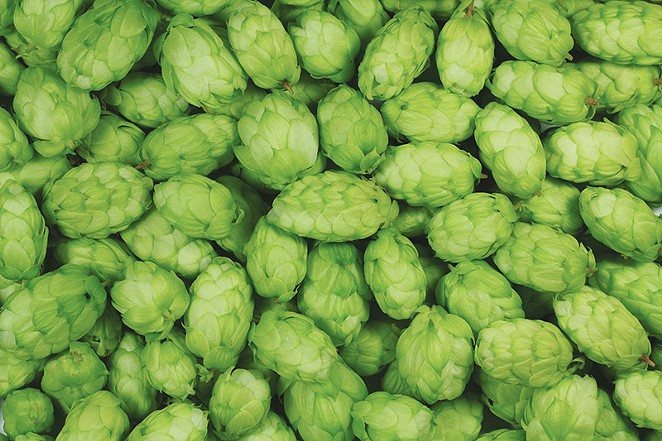 There's no such thing as Texas hops.