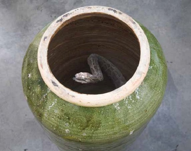 "Huang Yongping's ""Well"" - COURTESY"