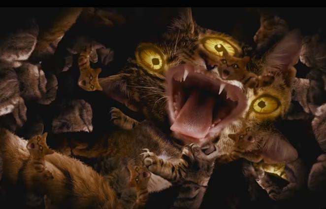 Seriously terrifying kitties - YOUTUBE