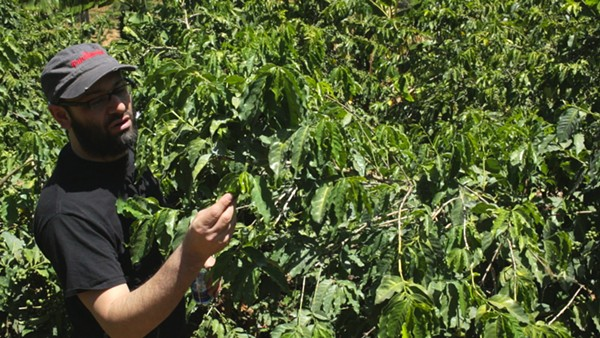 Brown Coffee Co. owner Aaron Blanco searching out the perfect coffee beans in the upcoming documentary Coffee Hunting: Kenya. - COURTESY
