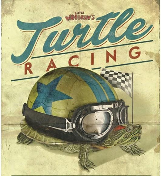 476b9ca4_little_woodrow_s_turtle_racing.jpg