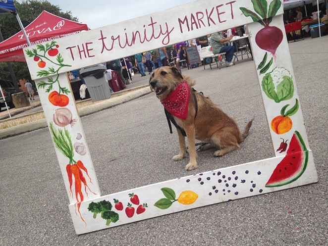This pupper is going to have to find a new market photobooth. -  FACEBOOK/TRINITY MARKET