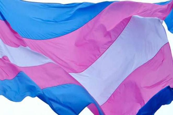 trans_flag.jpg