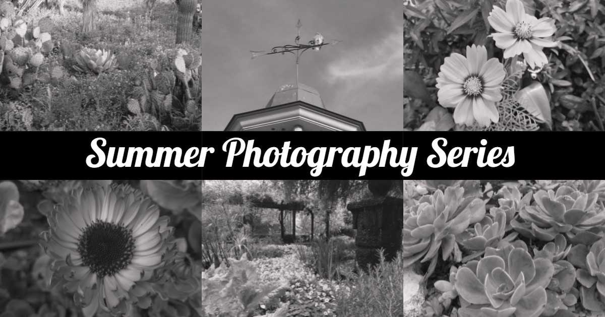 photography_series_sabot.jpg