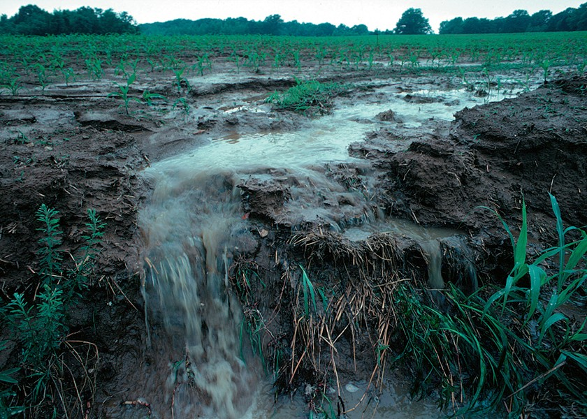 Runoff from a farm field transports pollutants during a rainstorm. - LYNN BETTS (U.S. DEPARTMENT OF AGRICULTURE)/WIKIMEDIA COMMONS