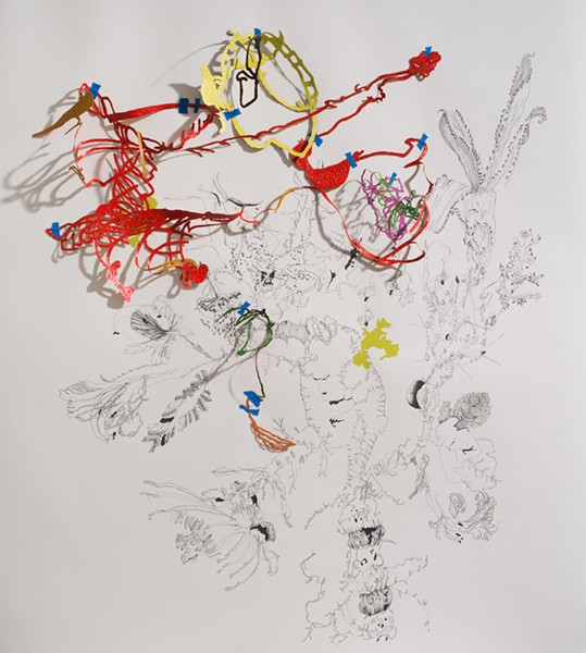 LEIGH ANNE LESTER, BLIND TRAJECTORY