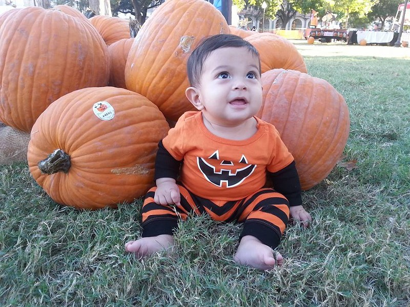 Put your kid amidst pumpkins and photograph him/her at the Centro San Antonio Flash Patch. - VIA CENTRO SAN ANTONIO/FACEBOOK