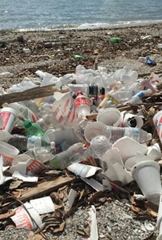 Non-biodegradable polystyrene cups lie strewn across the Corpus Christi Bay beach. (Notice those orange Whataburger cups?)