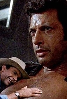 Treasured Chest: Actor Jeff Goldblum's Popularity Rises in Recent Years Thanks to a Viral Jurassic Park Meme
