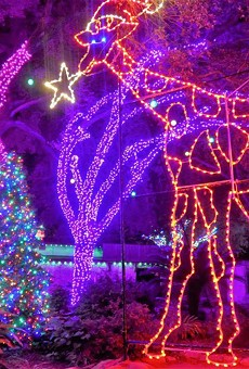 10 Things to Do in San Antonio to Avoid Your Family on Thanksgiving