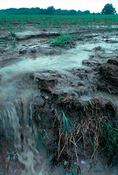 Runoff from a farm field transports pollutants during a rainstorm.