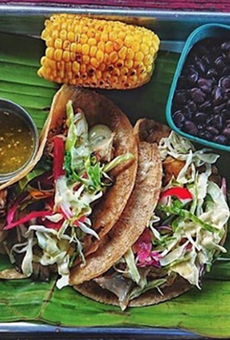 San Antonio's First Vegan-Friendly Festival Happening This Summer