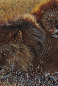 """""""Partners,"""" 2007. John Banovich. Oil on Belgian linen. 32"""" x 50"""". Collection of the James Museum of Western and Wildlife Art."""