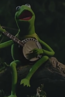 Kermit, pining for his former boo, Ms. Piggy.