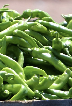 Central Market's 26th annual Hatch Chile Fest is slated to start this week.