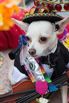 All Walks Converge in King William Saturday for a Funky Fiesta Finale