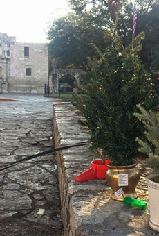 San Antonians Protest Alamo Christmas Tree Relocation with Mini-Tree Display