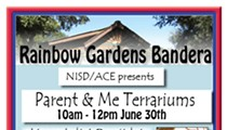 Nisd/Ace presents Parent & Me Terrariums