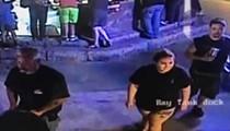 San Antonio Aquarium Shark Stolen, Disguised as Baby Safely Returned