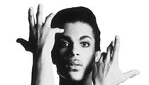 <em>4U: A Symphonic Celebration of Prince</em>
