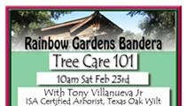 Tree Care 101