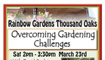 Overcoming Gardening Challenges