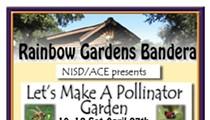 NISD/ACE presents Let's Make A Pollinator Garden