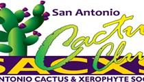 San Antonio Cactus & Xerophyte Society Show & Sale